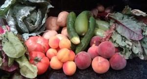 Cistella de verdura, hortalissa i fruita ecològica.