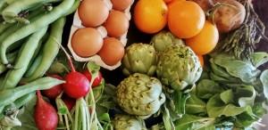 Cistella de verdura i hortalissa ecològica i proximitat.